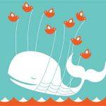 5 Cosas que a los usuarios no les gusta de Twitter