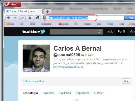 Twitter usando HTTPS 2