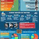 Infografía de lo que es Twitter en el año 2012