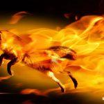 Ya se puede descargar Firefox 13 en desarrollo