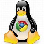 Descargar Chrome para Ubuntu