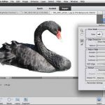 Photoshop Elements 11 2012