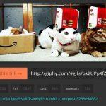giphy.com, encuentra y descarga imagenes gif