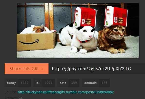 giphy-com