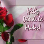Imagenes para el dia de la madre 2013