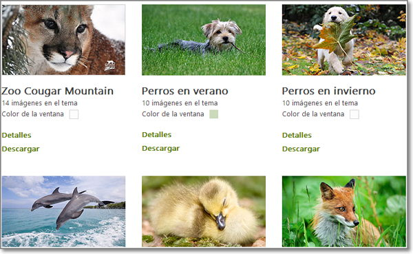 Temas para Windows 8 de animales 2