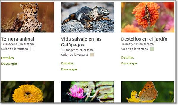 Temas para Windows 8 de animales