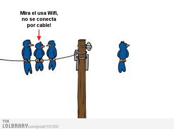 esta usando wifi