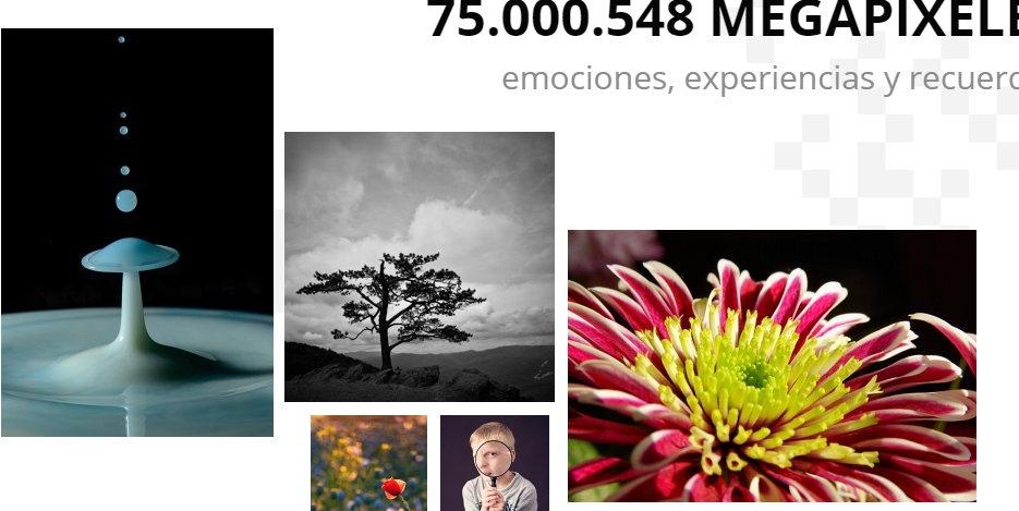 Alternativa flickr