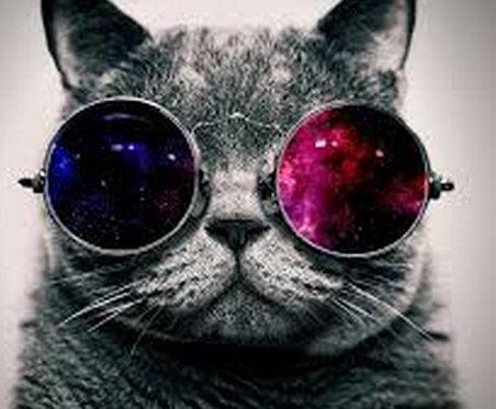 Ser cool