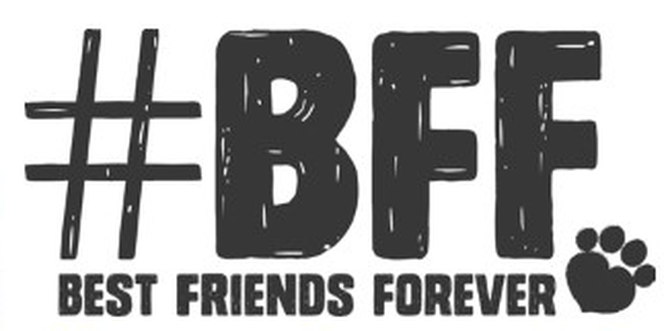 Best Friend forever imagenes
